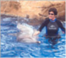 This is the first of four thumbnail photos of me swimming with and stroking a dolphin